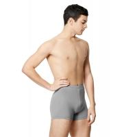 Lulli Heren Shorts Ranier grijs